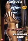 Playmate Video Calendar 2008