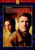 Everwood - Die komplette 1. Staffel