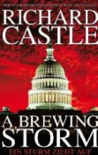 Richard Castle: Derrick Storm 1 - A Brewing Storm (E-Book)