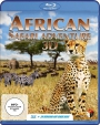 African Safari Adventure 3D (Blu-ray)