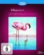 Das Geheimnis der Flamingos (Blu-ray)