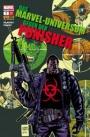 Das Marvel-Universum gegen den Punisher