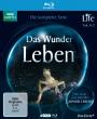 Das Wunder Leben (Blu-ray)