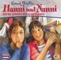 Hanni und Nanni 41 - und die geheime Mitternachtsparty