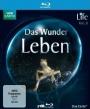 Life - Das Wunder Leben - Volume 1 (Blu-ray)