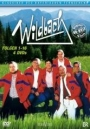 Wildbach 1