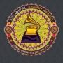 Grammy Awards 2011: ProSieben zeigt die Verleihung des Musikpreises ab 02:00 Uhr