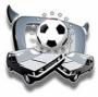 """Heute live: Die """"TV total Autoball WM 2010"""" auf ProSieben"""